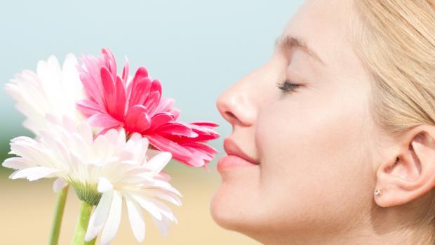 odorat-développer-symptomes-grossesse
